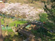 花見 岩手の緑化センター