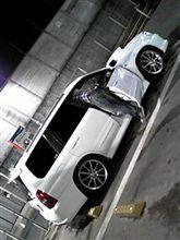 フォレスター洗車