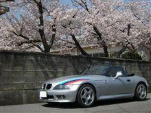 桜の季節のお約束