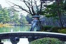 cherry blossoms in 兼六園