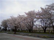 春季検閲式
