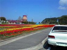 090415 春花ドライブ
