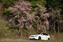 春の茨城県北ドライブ