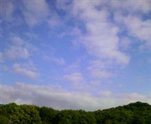 おはよ( ´∀`)ノ 09/04/27