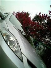 洗車&花見ドライブ