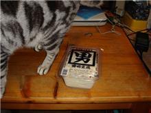 噂の豆腐を入手(;^_^A