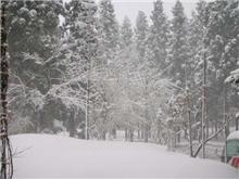湯沢は吹雪