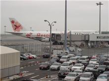 リゾッチャin羽田国際線ターミナル