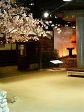 鳥取にいます