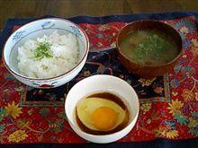 本日のお昼ごはん(^^)