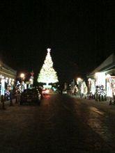 函館のクリスマスツリー♪第一弾