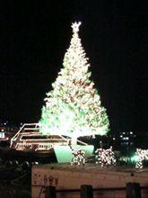 函館のクリスマスツリー♪第二弾