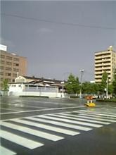 梅雨らしい天気の合間に