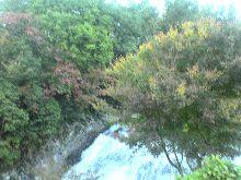 温泉&紅葉