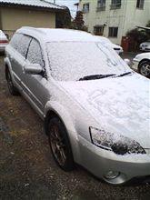 名古屋は雪です