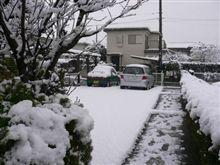 今年初めての降雪