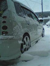 凄い雪・雪・雪!!