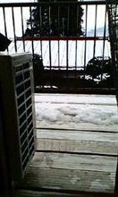 久しぶりに雪が。。