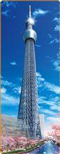 新東京タワー!