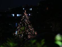 近所も既にクリスマス