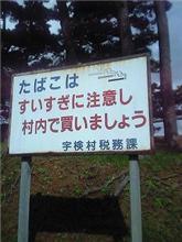 宇検村の道路脇にて・・・