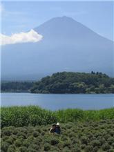 2005 夏 河口湖ツアー
