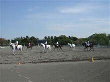 警察騎馬隊の練習