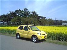 黄色い畑に黄色い車?