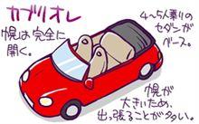 オープンカーに乗る・・現代だからこそなオープンカーを