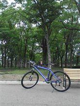 サイクリング(*^_^*)