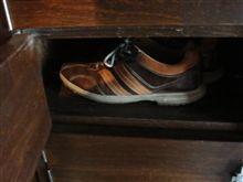 靴を入れる