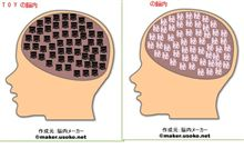 TOYの脳内イメージ