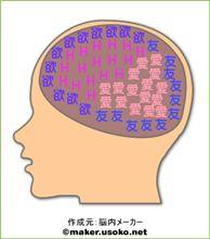 脳内観察!?