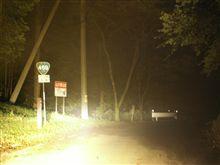 深夜の桜峠