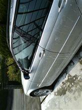 久々の洗車♪