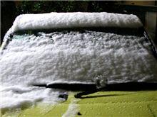 雪が積もりましたョ~!
