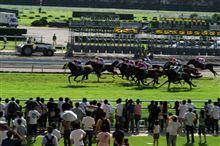 【緊急】競馬開催の中止