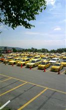 黄色がいっぱい…