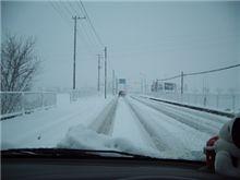 こんな大雪の日にどこへお出かけ?