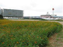 モータースポーツジャパン2007