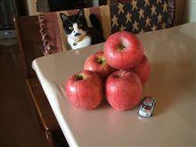 今年のりんごを見て考えた