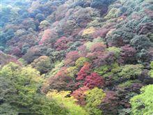 六甲山と箕面にも行きました