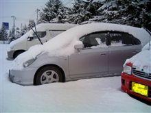 初雪=根雪 でしょう。