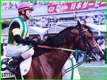 今週末の阪神競馬