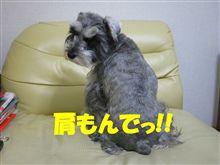 目標達成 \(^O^)/♪