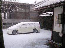 雪が降ってる・・・