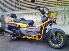 バイクをさわってやる。