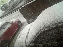 大雪っすわ。