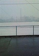 雪だよーーーー