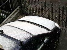 雪...降った!